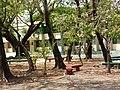 Praça Firmina Sobreira (Instituto Antonino Freire).jpg
