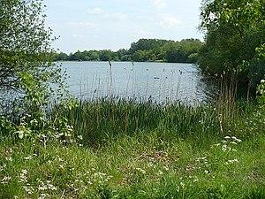 Priory Country Park - Image: Priorycountrypark