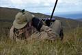 Professional stalker glassing deer Ardnamurchan Estate Scotland 01.png