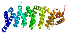 Protein CAB39 PDB 1upk.png