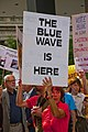 Protesting Illinois 6th District Republican Congressman Peter Roskam Chicago Illinois 7-26-18 2820 (28779742247).jpg