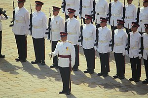 Queen's Division - The Royal Gibraltar Regiment