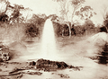 Queensland State Archives 2240 No 2 Bore at Woolerina Station depth 2908 ft estimated flow 750 000 gallons daily 1897.png