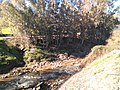 Río Ubrique 2.jpg