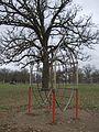 Radar Climber, Riverside Park, Riverside, Iowa.jpg