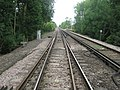Railway to Staplehurst - geograph.org.uk - 1387948.jpg