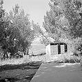 Ramat Rachel Gezicht vanaf een heuvel in de richting van Bethlehem Op de voorg, Bestanddeelnr 255-3843.jpg
