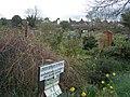 Ravensbourne Allotments - geograph.org.uk - 348710.jpg