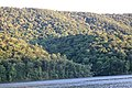 Raystown lake August 2016 - panoramio - Ron Shawley (130).jpg