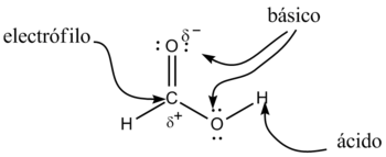 ejemplo de vias anabolicas
