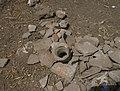 Red rock - bones 4.jpg