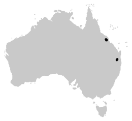 Rheobatrachus distribution.png