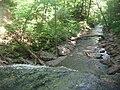Ricketts Glen State Park Sheldon Reynolds Falls 3.jpg