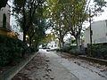 Riera de Cabrils a Vilassar de Mar P1280065.jpg