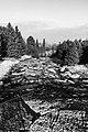 River Awakens (211996765).jpeg