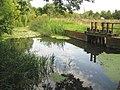 River Colne at Alderford Mill - geograph.org.uk - 1458318.jpg