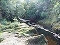 River North Esk - geograph.org.uk - 1433565.jpg