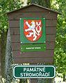 Rožmberk, památné stromořadí okolo hráze (1).JPG