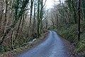 Road and stream leaving Cwm Erfyn - geograph.org.uk - 1130052.jpg