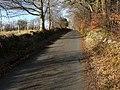 Road beside the Avon Burn - geograph.org.uk - 1770347.jpg