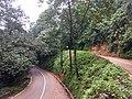 Roadside Landslip Anaimalali Hills IMG 20180822 165052375.jpg