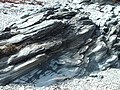 Rocks At Loch Striven - geograph.org.uk - 764965.jpg