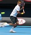 Roger Federer 2011.jpg