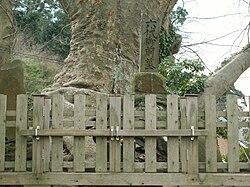 平高清(六代御前)の墓