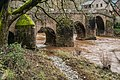 Roman Bridge over Dourdou River in Conques 06.jpg