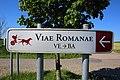Romeinse weg Velzeke-Bavay 03.jpg