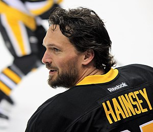 Ron Hainsey - Hainsey with Penguins in 2017.