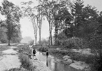Rosedale, Toronto - Rosedale Ravine, 1890
