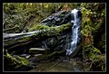 Russian Gulch State Park waterfall.jpg