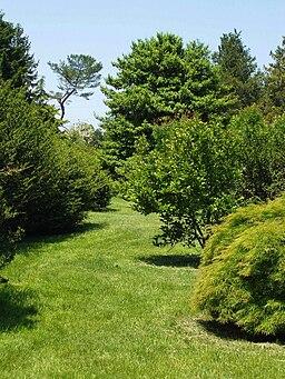 Rutgers Gardens - arboretum
