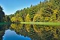 Rybník v údolí potoka Pilavka poblíž Ochozské Kyselky, Budětsko, okres Prostějov (02).jpg
