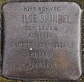 SG Stolperstein - Ilse Shindel, Elisenstraße 9.jpg