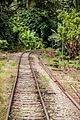 SabahStateRailways RailwayOperationInPadasRiverValley-08.jpg