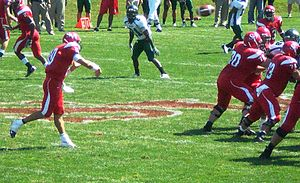 Saginaw Valley State Cardinals - Saginaw Valley State University football game