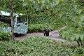 Sahoro Resort Bear Mountain サホロリゾート ベアマウンテン08.jpg