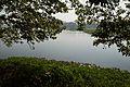 Santragachi Lake - Howrah 2013-01-25 3585.JPG