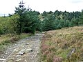 Sarn Helen Roman Road, Hirfynydd - geograph.org.uk - 963779.jpg