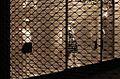 Schaufenster Kaufingerstrasse Muenchen.jpg