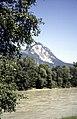 Schladming 1995 05.jpg