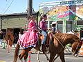 Seattle - Fiestas Patrias Parade 2008 - horses 02.jpg