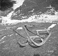 Seni. Deli- krvine, oplen, štrame. Jožef Komac, Kal 11 1952.jpg