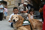 Service dog to aid seizure victim DVIDS440745.jpg