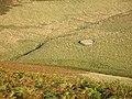 Sheep fank, Crooked Burn - geograph.org.uk - 575013.jpg