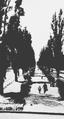 Shevchenko Boulevard, 1938.png