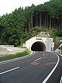 Shin Nagano TN S R163 Jp.jpg