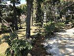 Shukkei Garden 4.jpg